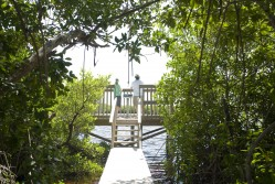 Little Cayman Nature Lookout
